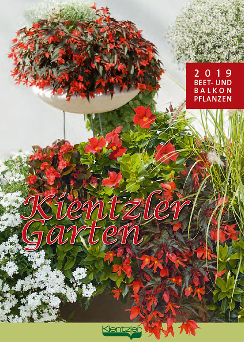 Kientzler young plants bed and balcony 2019