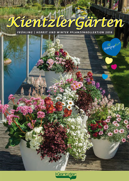 Kientzler young plants perennials catalogue 2018