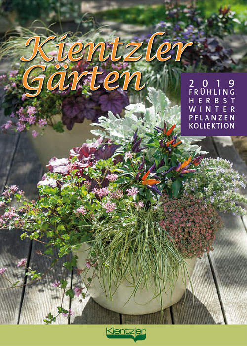 Kientzler young plants perennials catalogue 2019
